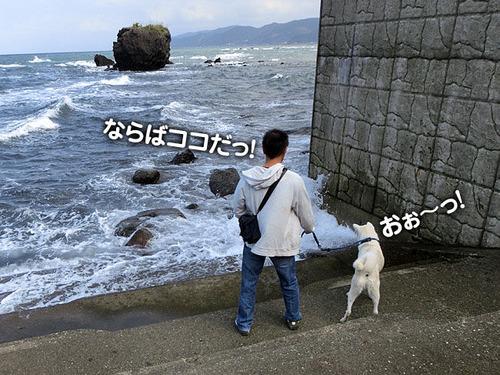 b5e128a5.jpg