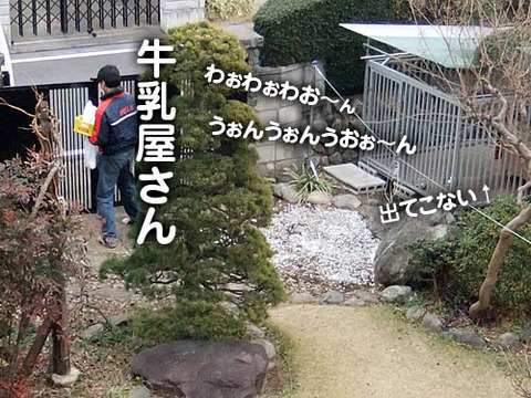 2010123002
