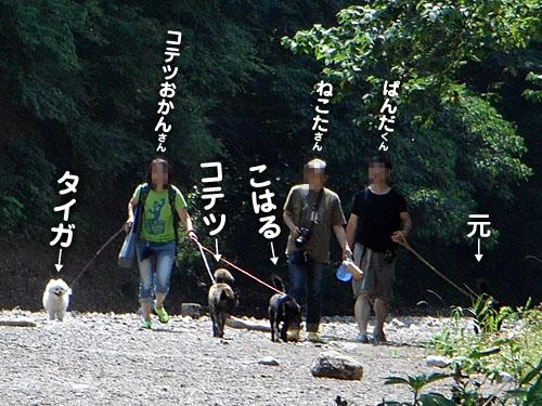 d729dbdf.jpg