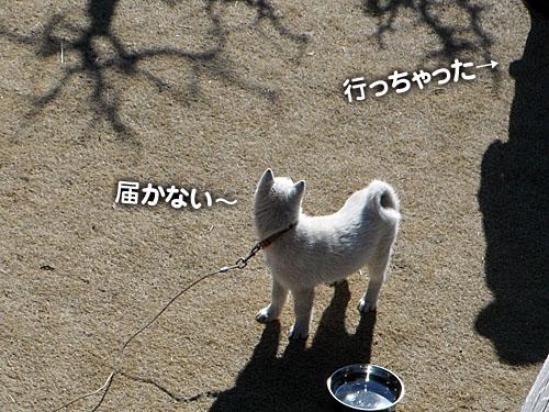 f9464ec6.jpg