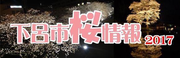 桜情報2017バナー