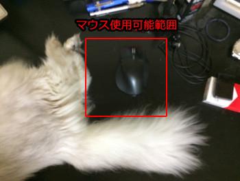 マウスが使えるのここだけ