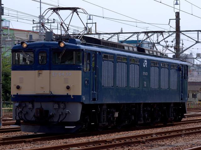 4-IMGP0113