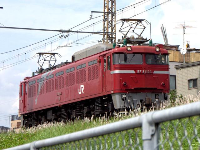 IMGP2985