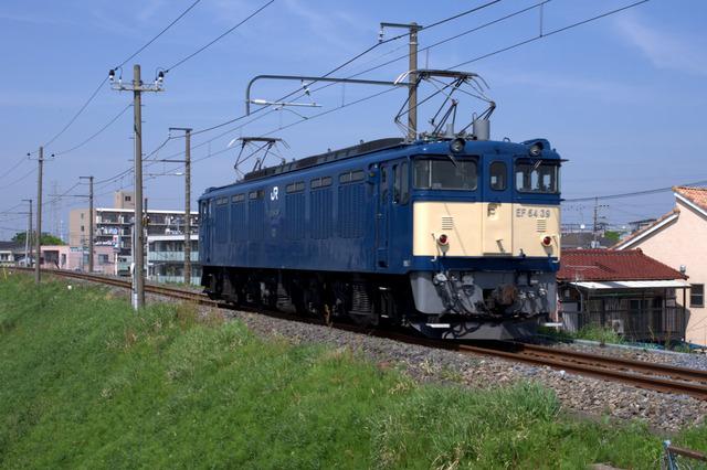 IMGP2060