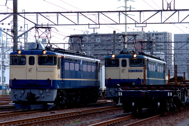 IMGP0500