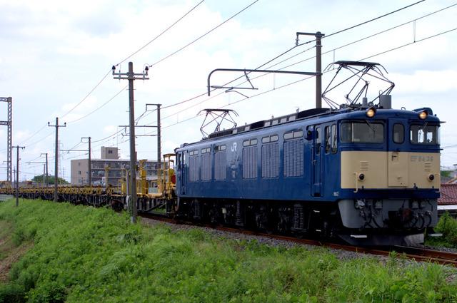 1-IMGP0316