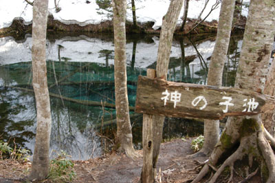 神の小池2
