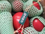 輪島朝市おばさん・上田農園のトマト