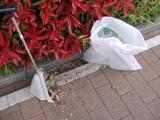 後谷公園前を清掃