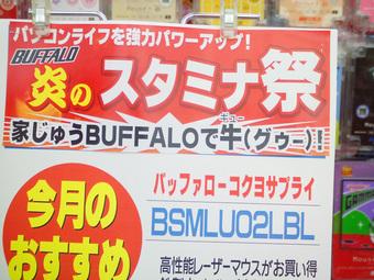 ビッグカメラ炎のバッファロー祭り