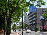市役所南通り(戸田市)