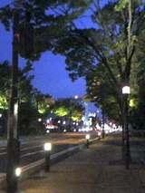 戸田市市役所南通り後谷公園前