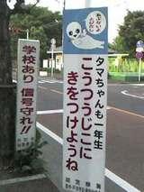 戸田市の小学校周辺でみられるタマちゃん看板