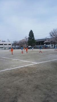 ファイナルカップ1
