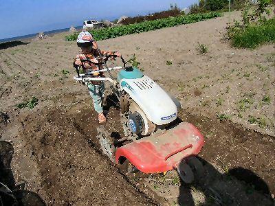 孫と耕耘機
