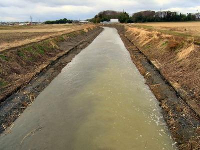 土川の浚渫1