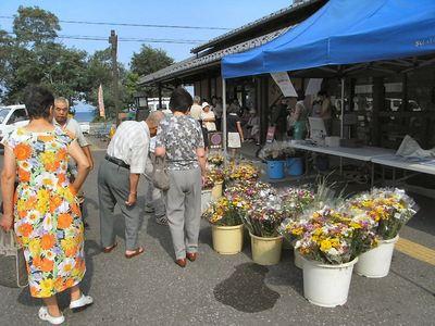 盆花売り場