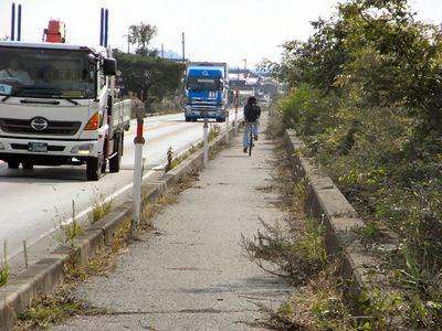 道路管理者による枝の刈り払い後
