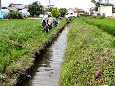 農業排水路泥上げ