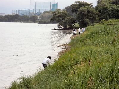 湖岸清掃北