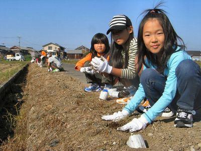 姫岩垂草植栽2