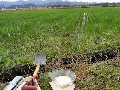 土壌試料採取1