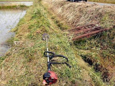 水路溝畔の草刈り