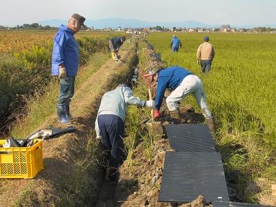 水路溝畔畦波板設置工事