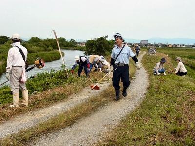 天野川堤防草刈り