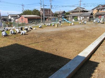 児童公園の草むしり