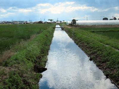 排水路の水位