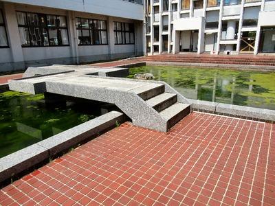 坂田小学校中庭