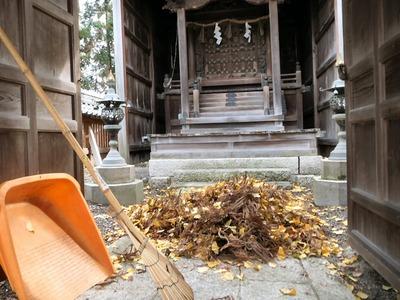 大量の落ち葉と杉の枯葉