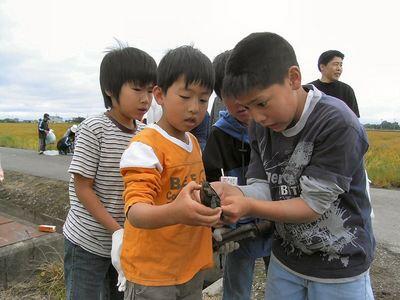 亀を見つけた子どもたち