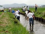 農業排水路清掃(県パンフレット)