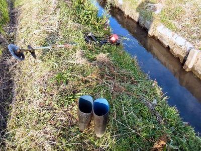 水路溝畔の除草