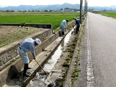 排水路の泥上げ