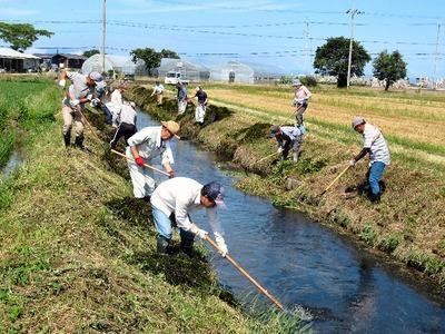 農業排水路の清掃