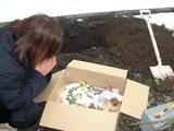 モコの埋葬