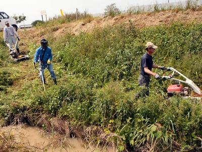 水路の管理用道路の除草