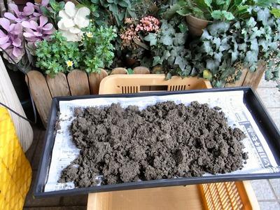 土壌診断試料の風乾