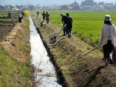 水路溝畔の除草1