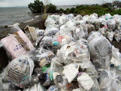 回収したゴミ