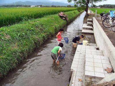 水路で遊ぶ子どもたち