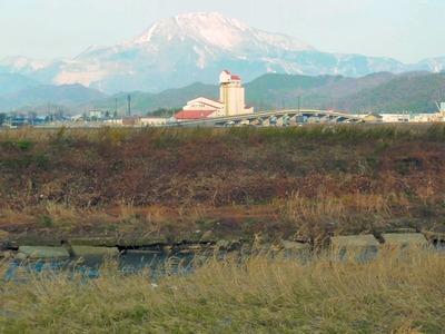 天野川の堤防