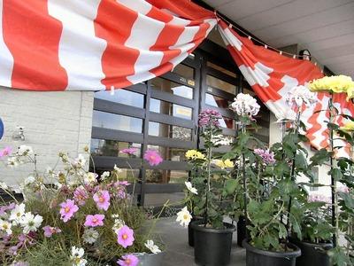 コスモス鑑賞と観菊会