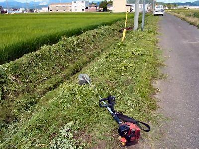草刈り(農道・水路溝畔)