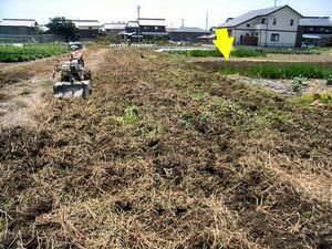耕作放棄農地