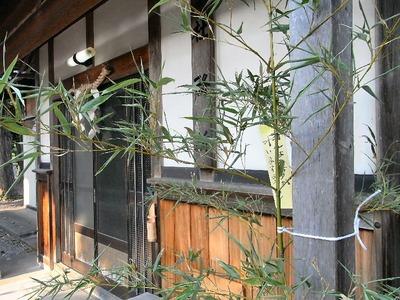 蛭子神社の笹